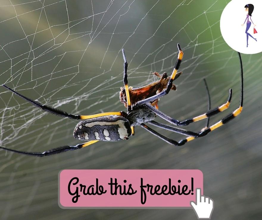 CatchyFreebies Sample Spider